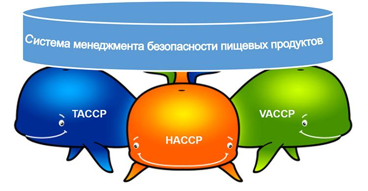 haccp-vaccp-taccp